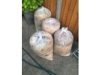 FREE Organic Guinea Pig Waste