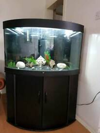Juwel black corner fish tank and Stand For Sale full set up
