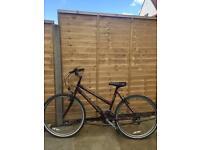 Bicycle - falcon - interceptor - purple - £15