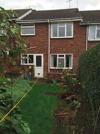 3-bed house to let January 2017