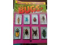 Real Life Bugs Collection