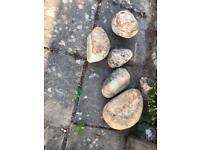 Decorative Garden Stones/Pebbles