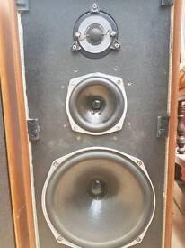 Speakers celastion ditton44