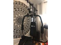 Pro Fitness Home Gym with Arm Curl Bar and Tricep Rope (Price Negotiable)