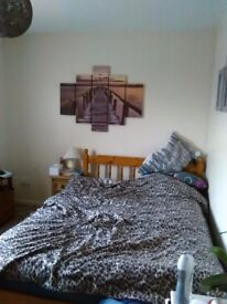 Furnished double bedroom £110 pw