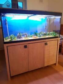 FLUVAL Roma 4ft fish tank and Stand For Sale full set up