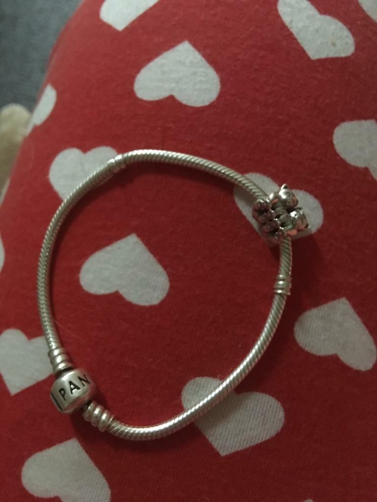 Pandora Bracelet With Uncommon Twin Cat Charm In East Kilbride