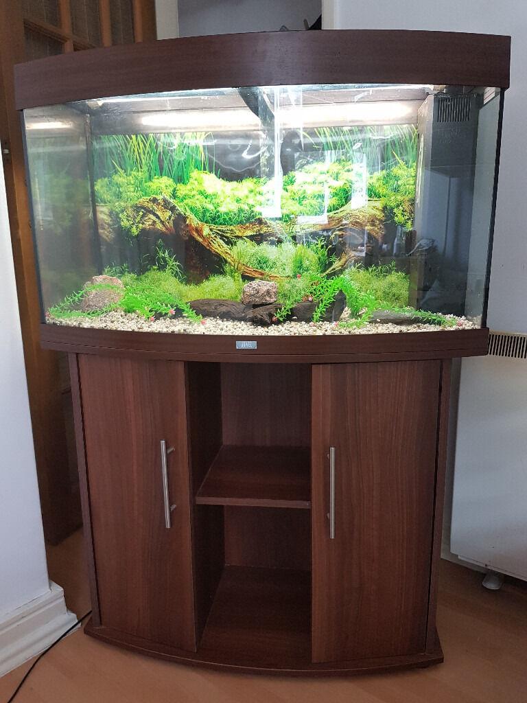 juwel vision 180 liter bow fronted fish tank and stan for. Black Bedroom Furniture Sets. Home Design Ideas
