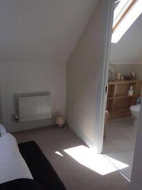Beautiful En-suite double bedroom in family house in Stevenage £550p/m