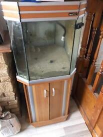 Aqua vital 200litre fish tank