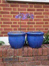 Beautiful Pair Plant Pots