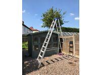 Step ladders (clow)