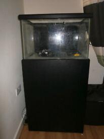 Fish Tank Marium Aquarium