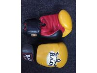 16 OZ Raja Boxing Gloves