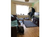 1 Bedroom in a Student House to rent