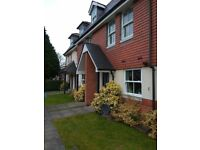Double Room to Rent in 3 Bed Modern Shared House Southampton Hospital uni common flat