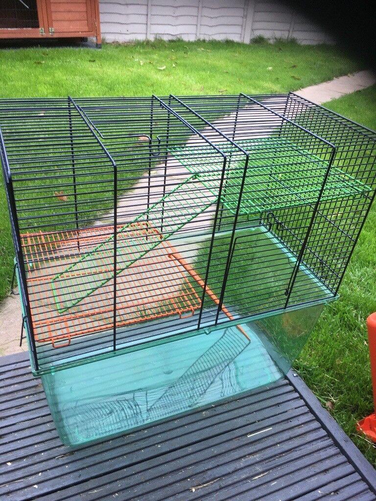 Gerbil/hamster cage.