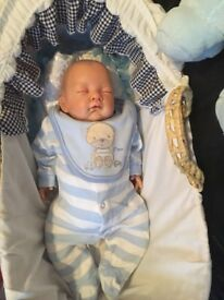 Reborn doll with moses basket, stand and clothes