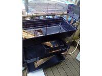 3tier cage