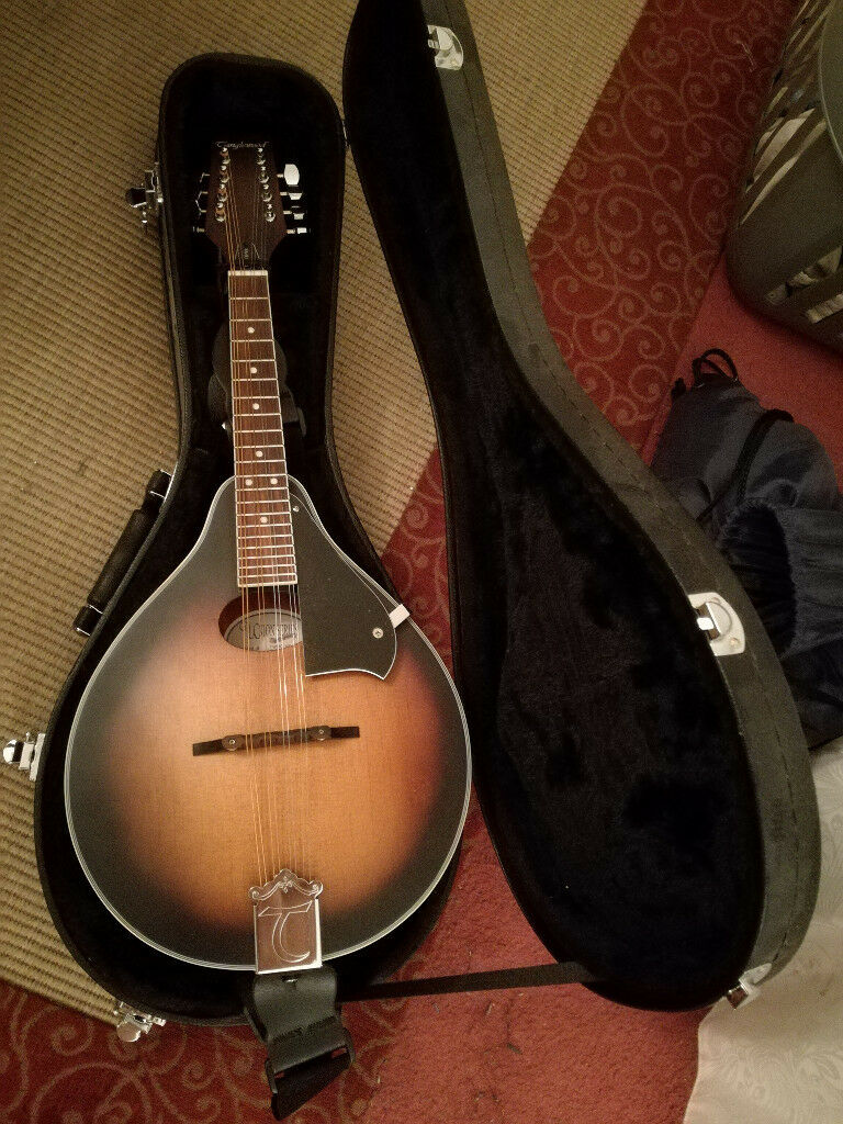 Tanglewood mandolin with case   in Hammersmith, London   Gumtree