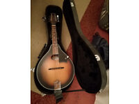Tanglewood mandolin with case