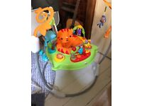 Barely Used Fisher Price Rainforest Jumperoo