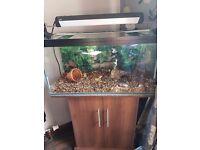 120l Fish Tank/Aquarium & Cabinet lots of extras