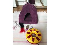 Igloo Cat Bed and Toys