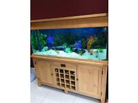 Aqua Oak Premium Fish tank & Wine Rack