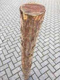 Large Yew Wood Pole