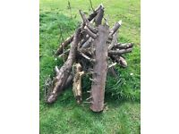 Logs for free uplift