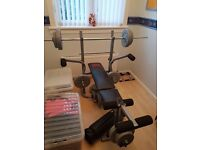 Pro power weight bench and ab circle pro