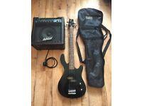 Ashton bass bundle