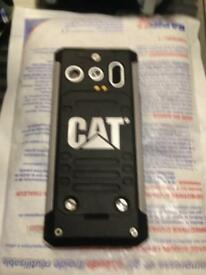Cat, builders phone