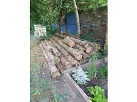 Rough Untreated Timber Logs