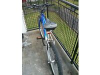 """Venture Milestar Mountain Bike for men 22"""" great condition+ helmet size L -pick up only"""