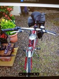 Raleigh Pioneer 120 - 6 Speed bike for sale needs some tlc not been used much stored