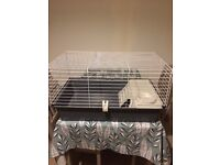 Guinea Pig/Rabbit/Small Animal Indoor Cage FOR SALE