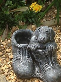 Lovely planter puppy in shoes
