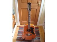 Eko Ranger 12 string guitar with case