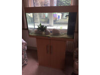 Empty Fish Tank, with light, pump and lots of extras included
