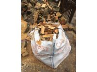 Season hard wood logs for sale