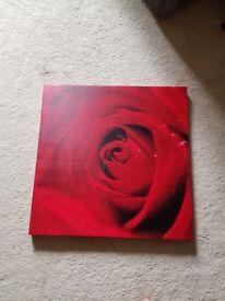 Rose print canvas art £5
