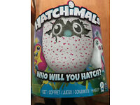 hatchimal pink toy for sale Brand new boxed unopened