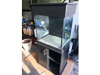 Clearseal show tank