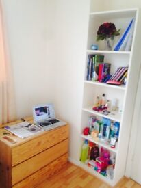 Large Cozy Single Room All bills Included Fully Furnished