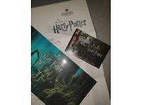 Harry potter world studio tour london