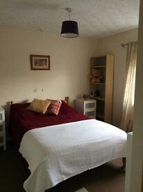 Double room to rent in tidy semi-detached house