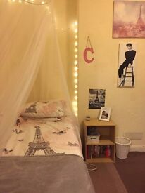 Single room for student in Elm Grove - available from March/April - August