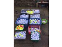Massive Quantity of Quality Golf Balls